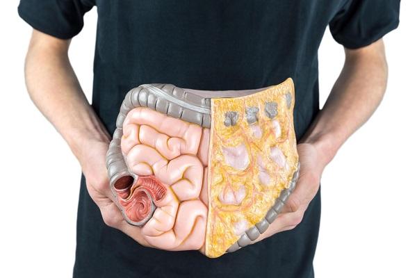 Aid bowel function