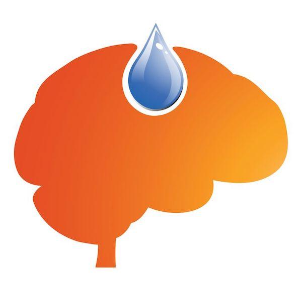 office_brain-function
