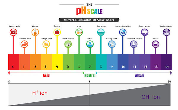 shampoo ph scale diagram what is mineral water? 8 common questions answered | premium water
